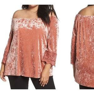 Daniel Rainn Crushed Velvet Off the Shoulder Top